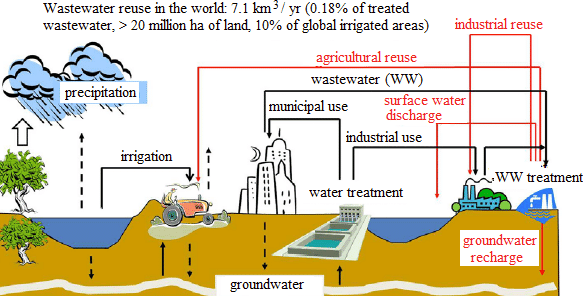 sewage water treatment for irrigation